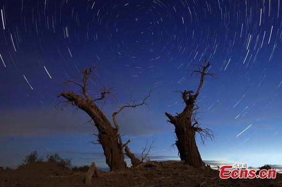 新疆塔里木盆地和平繁星之夜