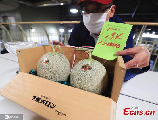 Auction price of Japan's premium melons dives amid pandemic