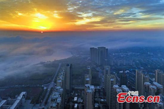Buildings shrouded in advection fog in C China cit