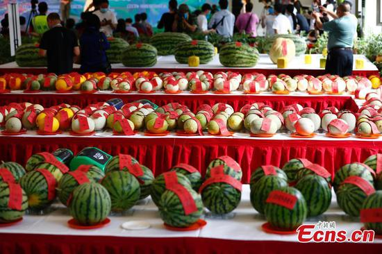 Highlights of 32nd Daxing Watermelon Festival in Beijing