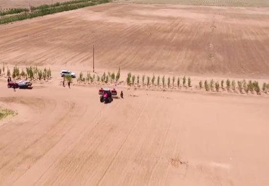 Farmers grow rice near sandy Bayannur, north China's Inner Mongolia Autonomous Region. (Photo/Screenshot on CNS TV)