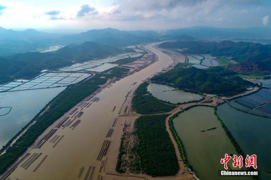 Aerial view of the national wetland park in South China's Guangdong Province, June 3, 2019. (File photo/China News Service)