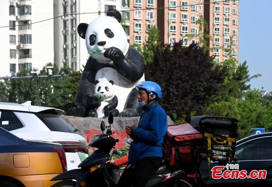 New road safety rule 'one helmet, one belt' takes effect in China