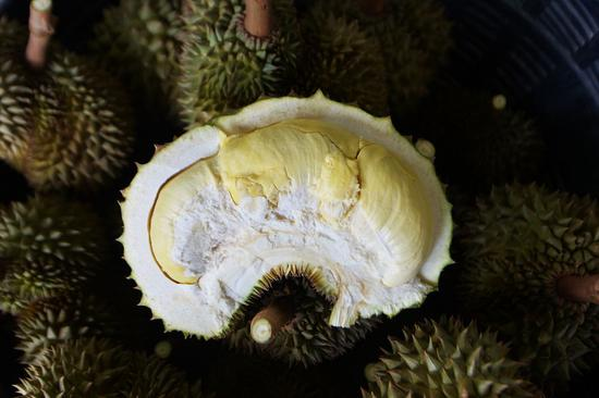 Thailand develops odour-proof boxes to store durian for international shipments