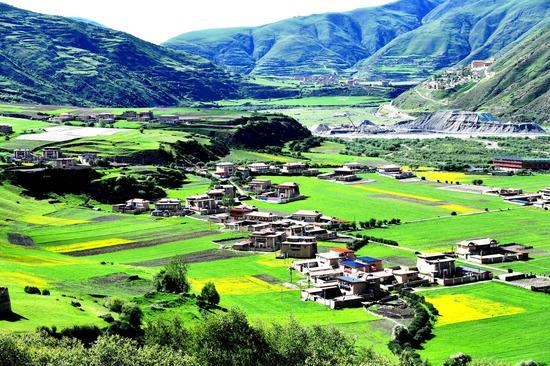 中国四川郁郁葱葱的绿色村庄