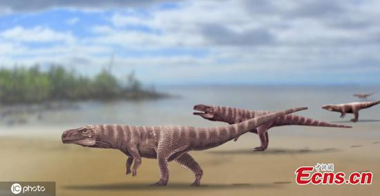 Cretaceous-Period crocodiles walked on two legs: researchers