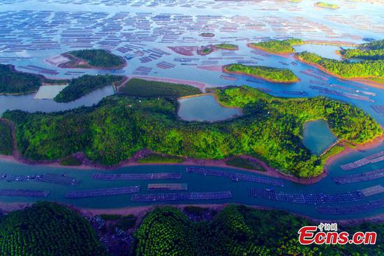 Scenery of oyster cultivation fields in Qinzhou, Guangxi