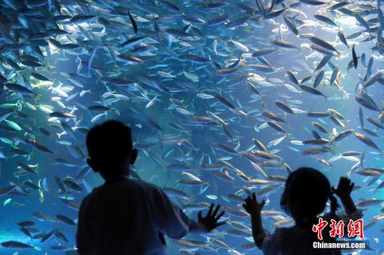 Global warming threatens 60 pct of fish species, media reports