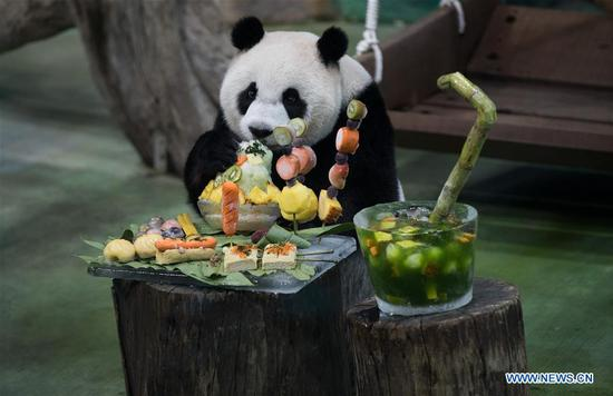 Giant panda celebrates 7th birthday in Taipei