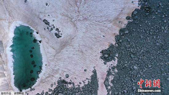 Pink ice in Italy's Alps sparks algae probe