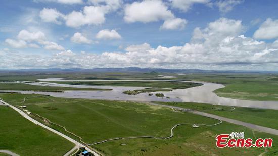 黄河汤塘风景秀丽