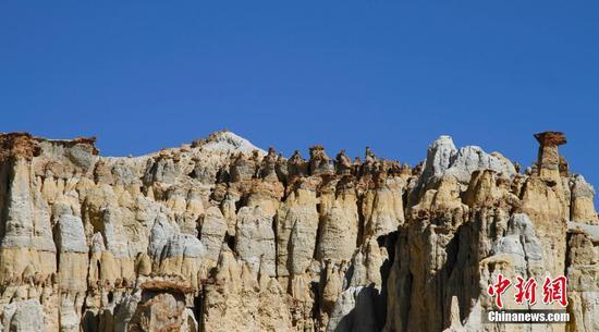 西藏地球森林地质公园风光