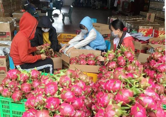 China-ASEAN trade grows robustly despite COVID-19 pandemic