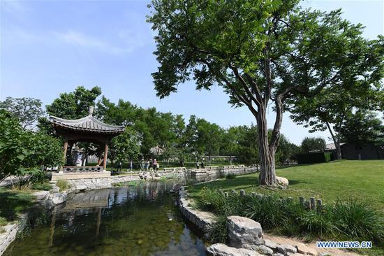 People visit the Sanlihe park of Dongcheng District in Beijing, capital of China, June 7, 2020. (Xinhua/Ju Huanzong)