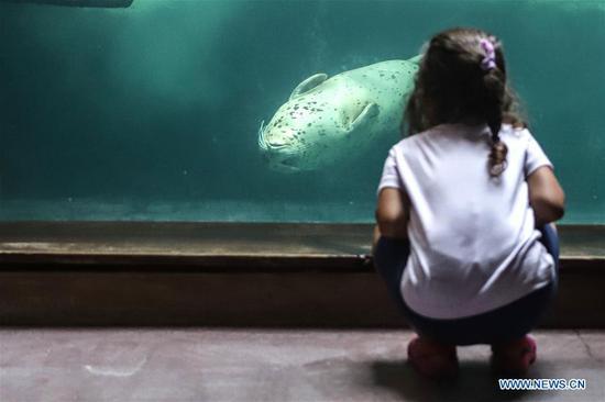 Sao Paulo's Aquarium reopens