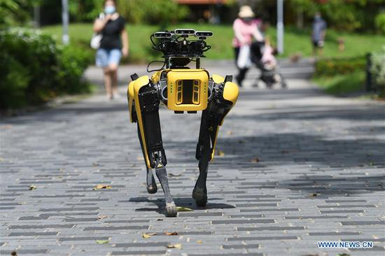 Robot dog SPOT seen during its second round trials in Singapore's Bishan Park