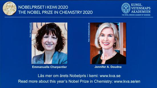 2 scientists awarded Nobel chemistry prize for discovery of 'genetic scissors'