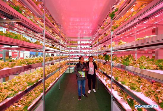 Agricultural hi-tech fair in China attracts int'l participants