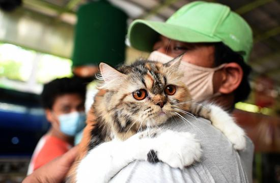 Pets receive free rabies vaccination in Jakarta, Indonesia