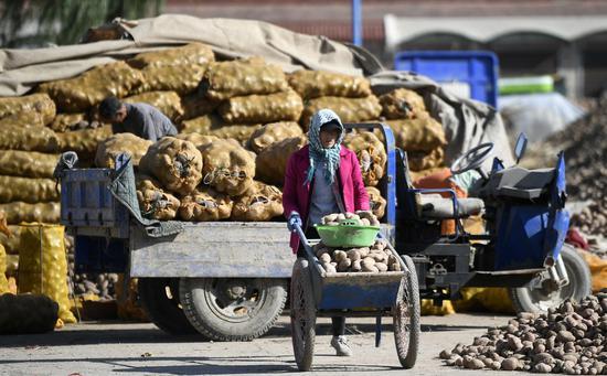 Farmers load potatoes at a potato trading center in Xiji County, Guyuan, northwest China's Ningxia Hui Autonomous Region, Oct. 21, 2020. (Xinhua/Wang Peng)