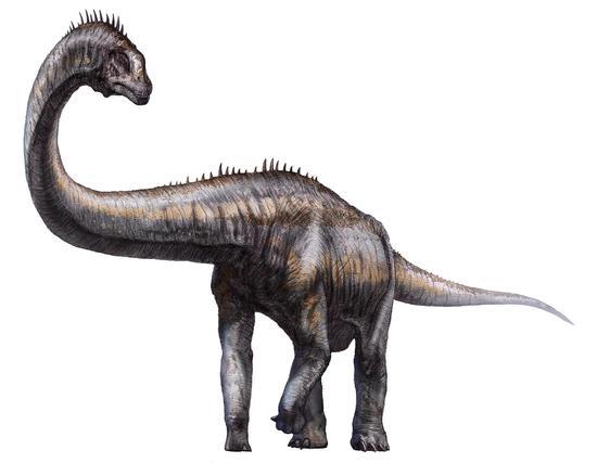 科学家发现西藏的恐龙脚印