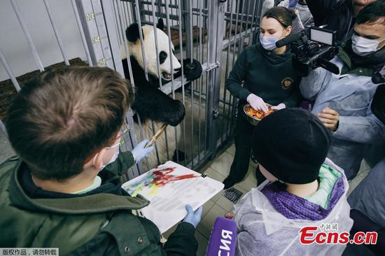 Putin helps fulfill wish of ailing boy who dreams of hugging a panda