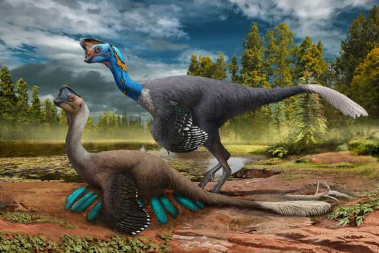 Rare dinosaur fossils found in east China