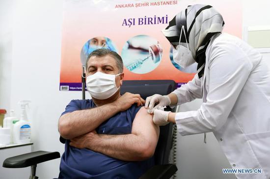 Turkish Health Minister Fahrettin Koca receives a dose of China's Sinovac COVID-19 vaccine in Ankara, Turkey, Jan. 13, 2021. (Xinhua)