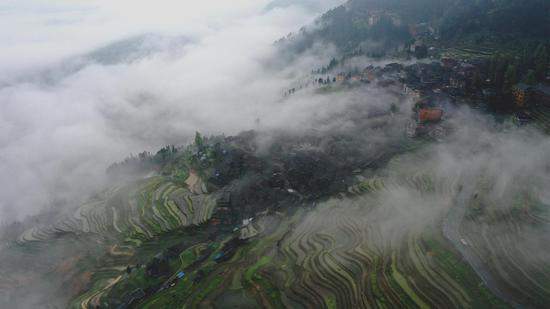 Scenery of terrace fields in Guizhou