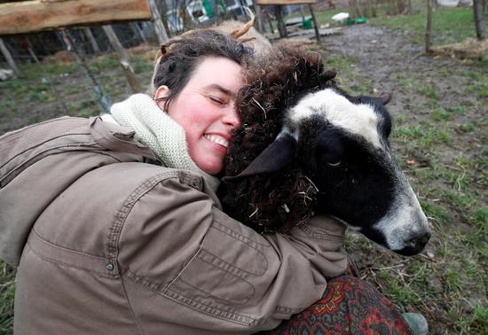 Feeling lonely in lockdown? Try hugging a sheep