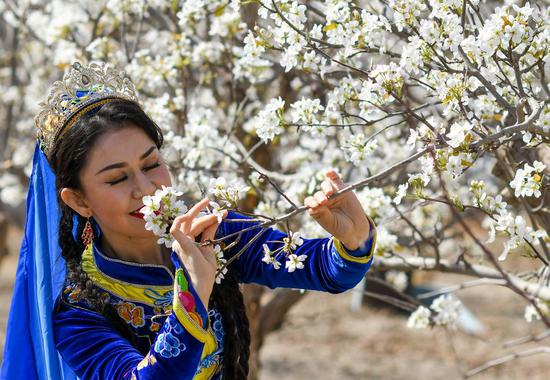 A dancer smells blooming pear blossoms in Awat Township of Korla City, northwest China's Xinjiang Uygur Autonomous Region, April 10, 2021. (Xinhua/Zhao Ge)