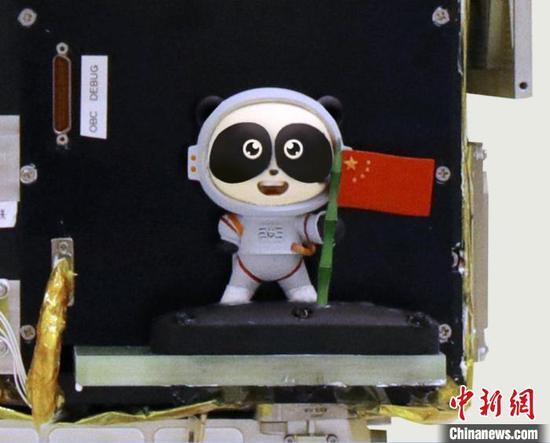 3D-printed giant panda model sent into space