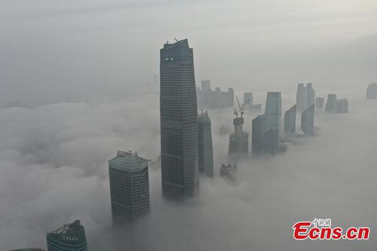Advection fog appears in Qingdao