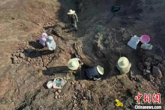 Archaeologists work on the site in Lufeng, Yunnan Province. (Photo/China News Service)