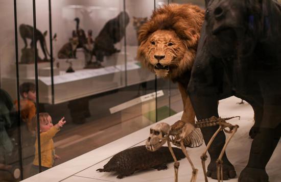 People visit Australian Museum in Sydney