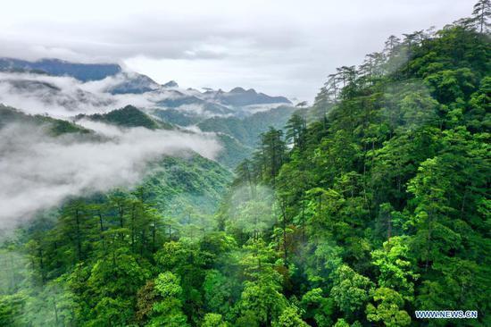 Scenery of Wuyishan National Park in Fujian