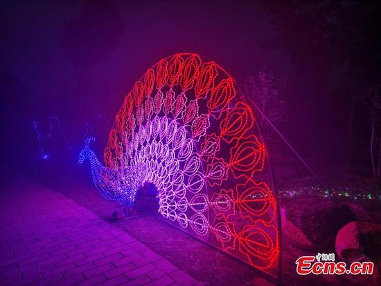 From barren land to wonderland, agricultural park in C China becomes must-see place