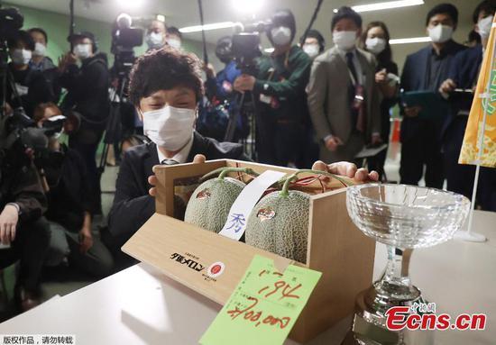 Pair of premium Yubari melons fetches $24,800 at Hokkaido annual auction