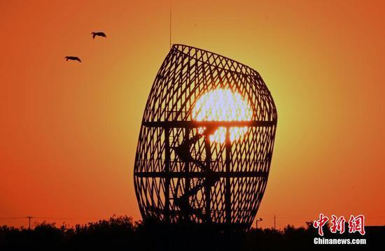 Saline-alkali area in Shandong turned into cultural destination