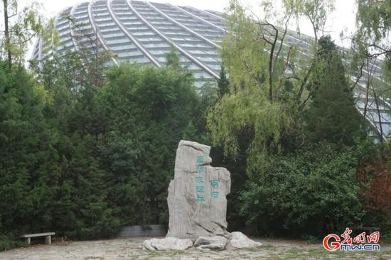 Chaoyang Int'l Forest of Friendship sees construction of community with shared future for mankind