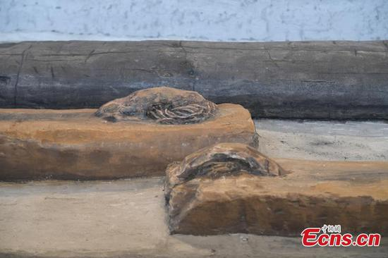 Restored wooden beams to reproduce palace buildings in Liangzhu period
