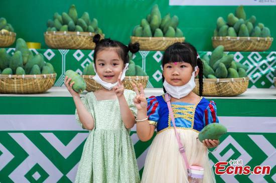 Mango harvest hits Guangxi