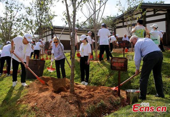 Tree planting activity held during UNESCO's World Heritage Committee