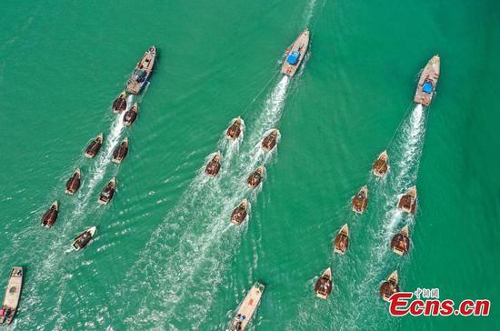Gracilaria harvest in E China's Shandong