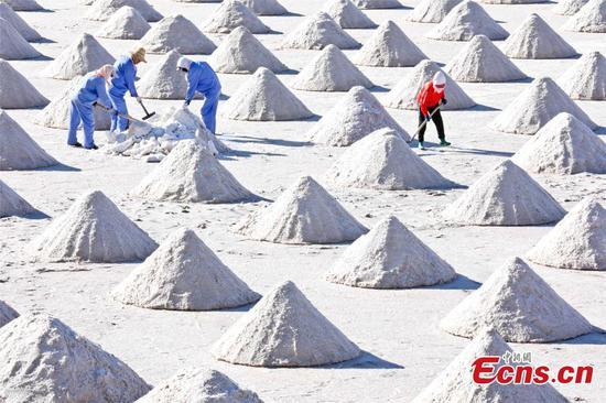 In Pics: A glimpse of salts in Gansu