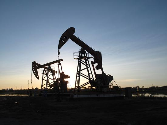China discovers major shale oil field