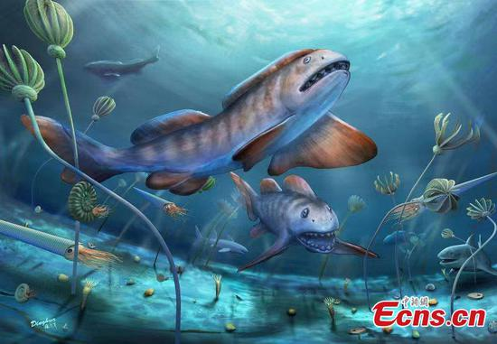 Extinct fish fossils of 290 mln years ago found in Shanxi