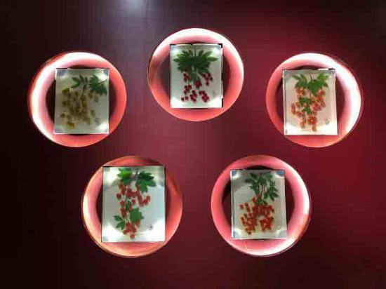 Lychee-themed exhibits on display in Chongqing