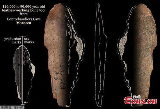 Oldest clothing-making tools dating back 120,000 years ago found in Morocco
