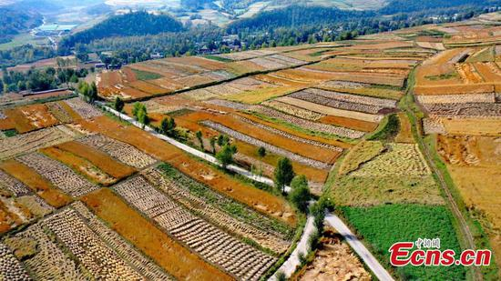 Aerial view of colorful fields on Qinghai plateau
